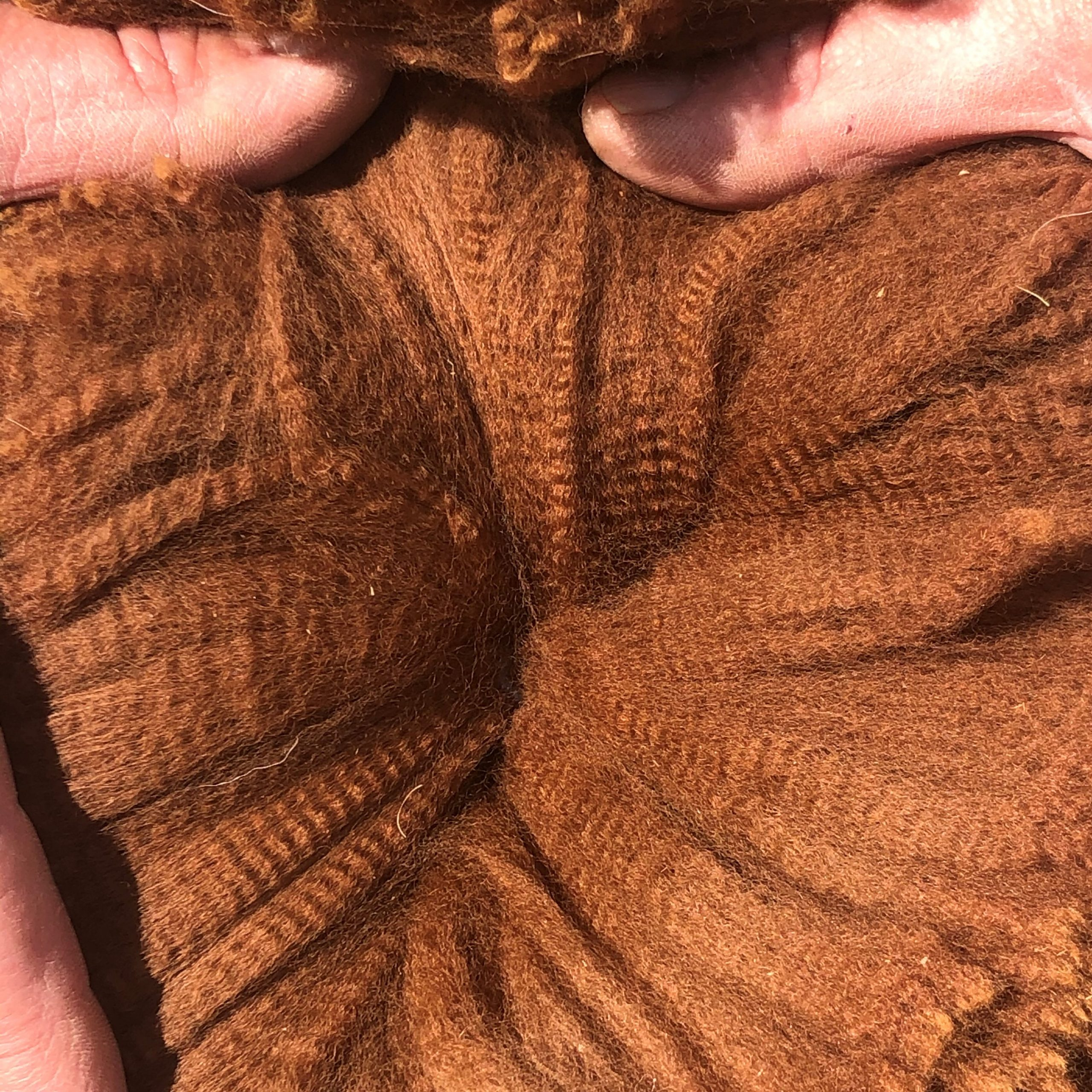 bella 4 web fleece